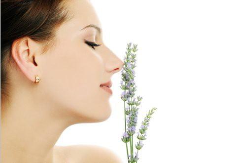 Lanolina to składnik kremu, który zadba o ujędrnienie i nawilżenie Twojej cery.