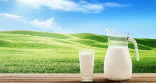 Mleko roślinne nie zawiera konserwantów, ani sztucznych barwników