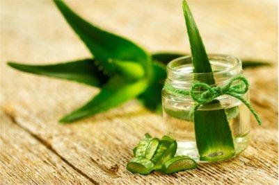 Aloes jest doskonałym domowym sposobem na walkę z uczuciem pieczenia w żołądku i zgagę.