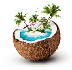 Wiórki kokosowe dostarczą Twojemu organizmowi solidną porcję błonnika.