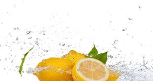 Dlaczego cytryna jest dla nas tak ważna?