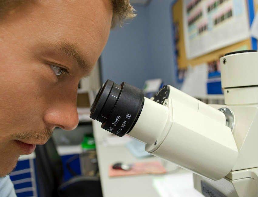 Badanie na podstawie genów - dieta