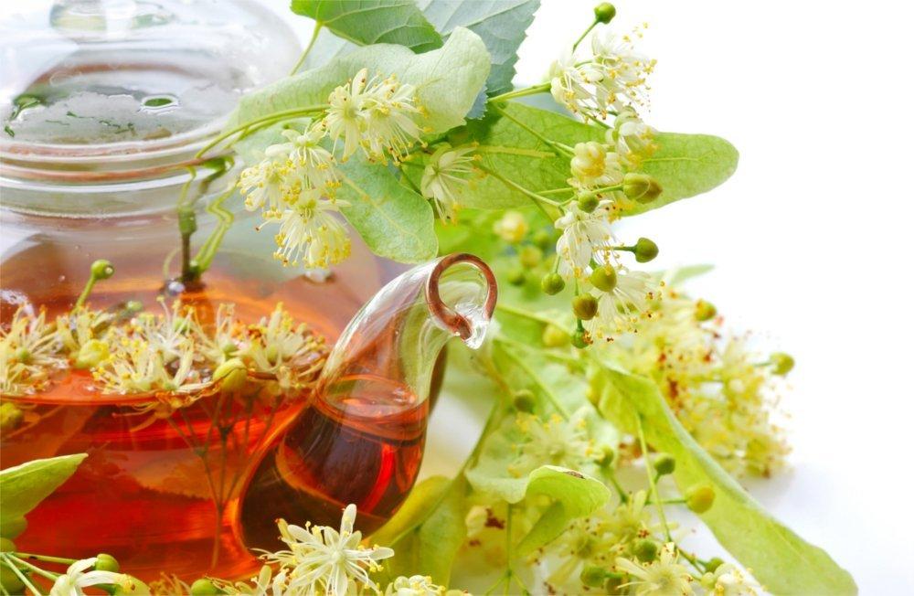 Herbata z lipy od lat jest znana jaki doskonały sposób na przeziębienie.