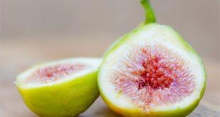 Dlaczego warto utrzymać formę z dietetykiem?