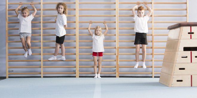 Jaki sprzęt sportowy na siłownię wybrać w szkole?