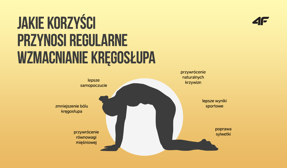 Dlaczego warto regularnie wzmacniać kręgosłup?