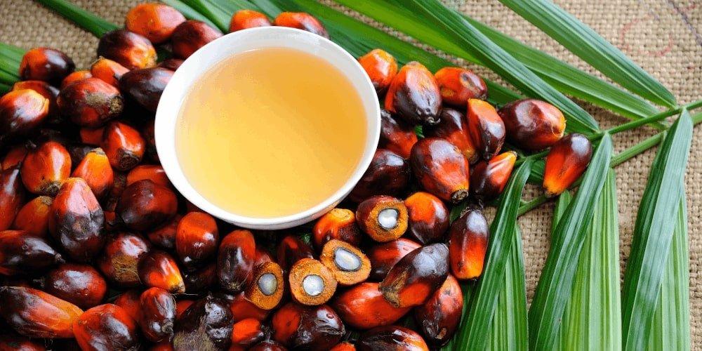Utwardzony olej palmowy jest szkodliwy dla organizmu.